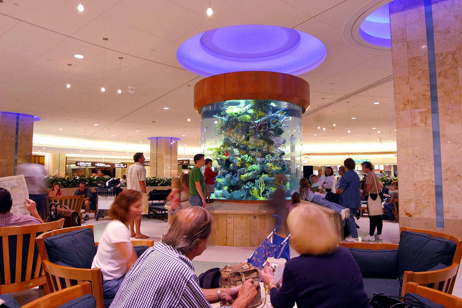 Aquarium in Food Court